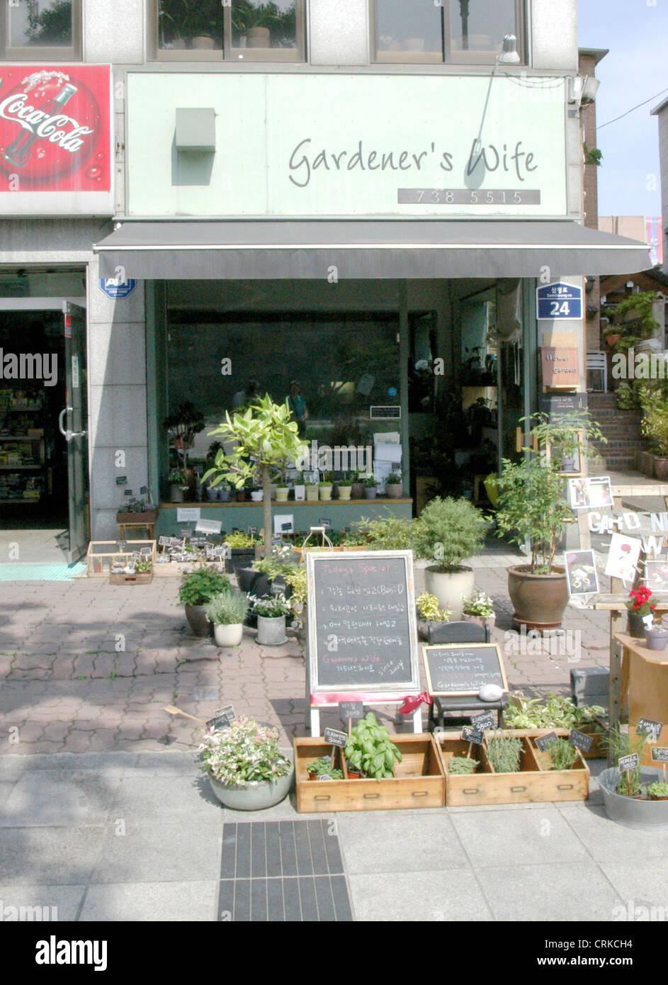 Flower shop in seoul south korea stock photo 48984800 alamy flower shop in seoul south korea mightylinksfo