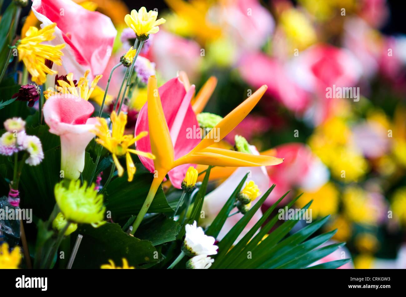flower arrangement near san agustin cathedral cagayan de oro, mindanao philippines Stock Photo