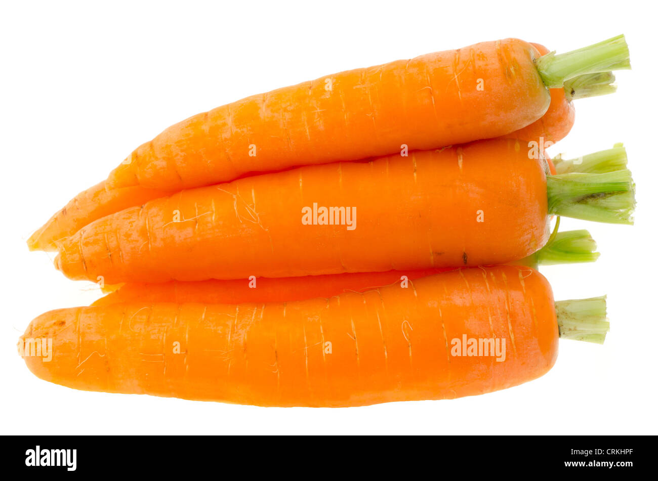 Fresh ripe carrots - studio shot with a white background - Stock Image