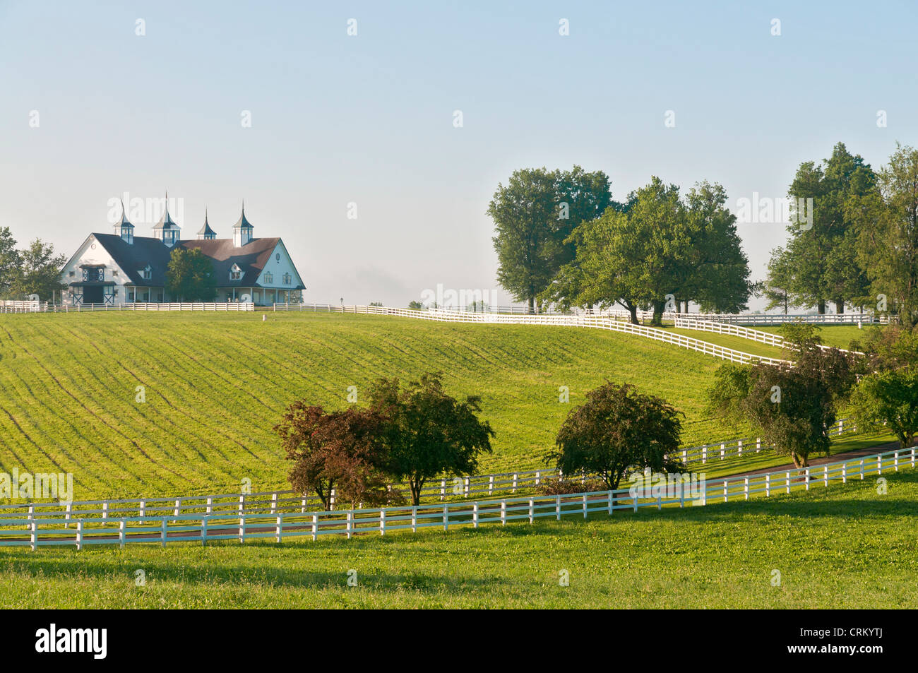 Kentucky, Lexington, Manchester Farm, Thoroughbred horse breeding farm, barn. - Stock Image
