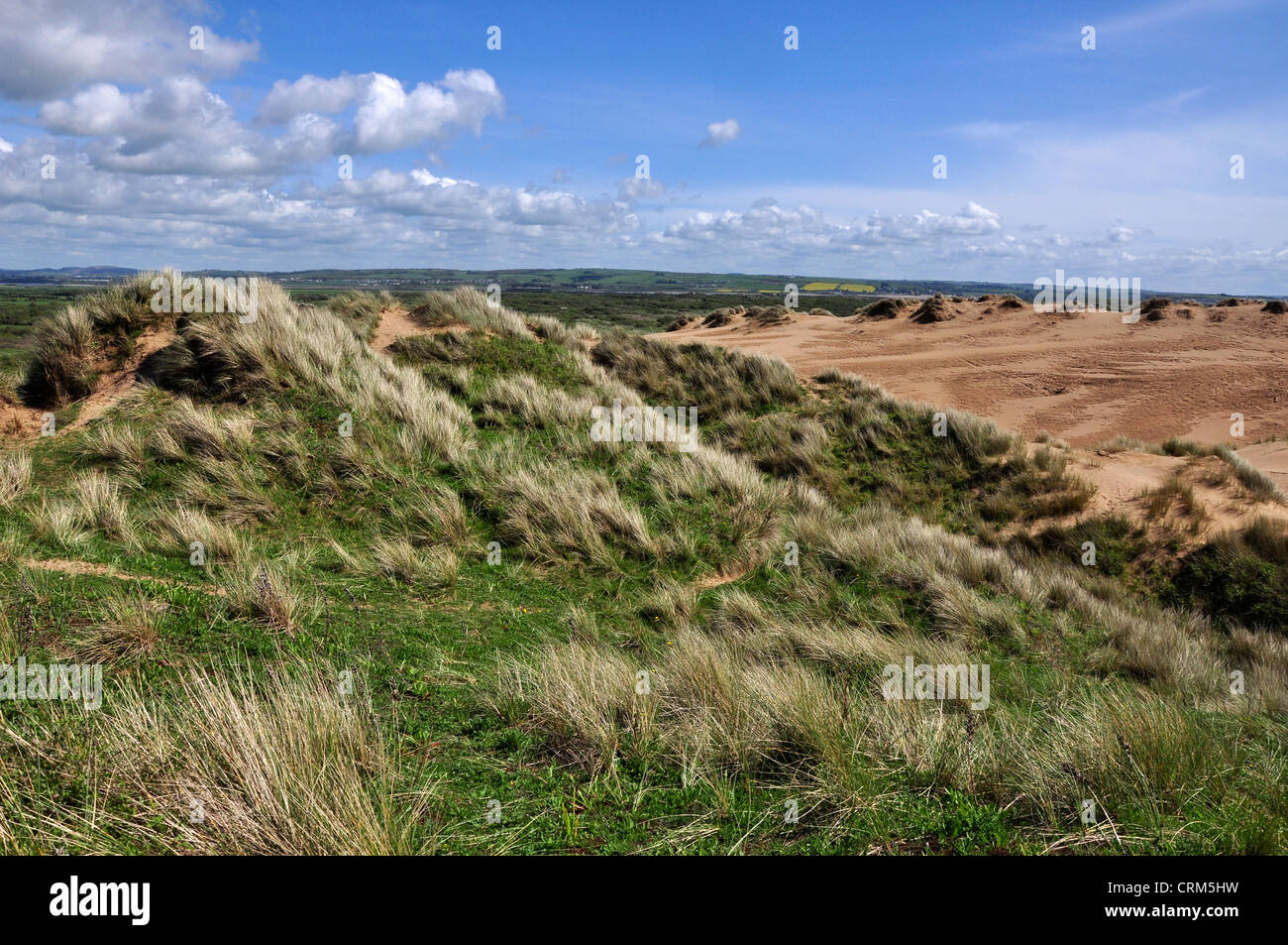 Braunton Burrows Devon sand dune Stock Photo