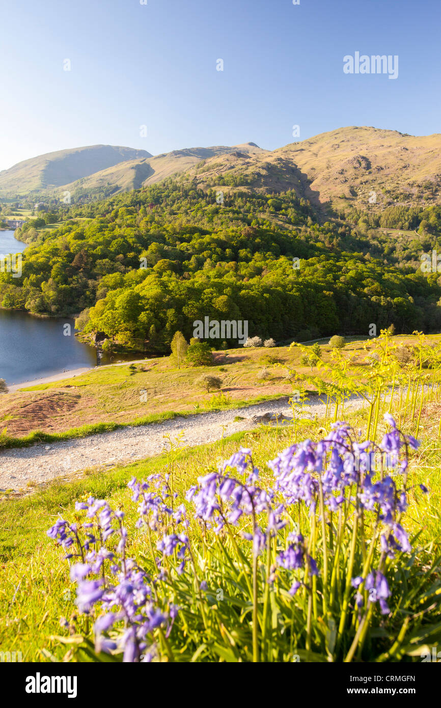 Grasmere Lake in Spring, near Ambleside in the Lake District, UK. - Stock Image