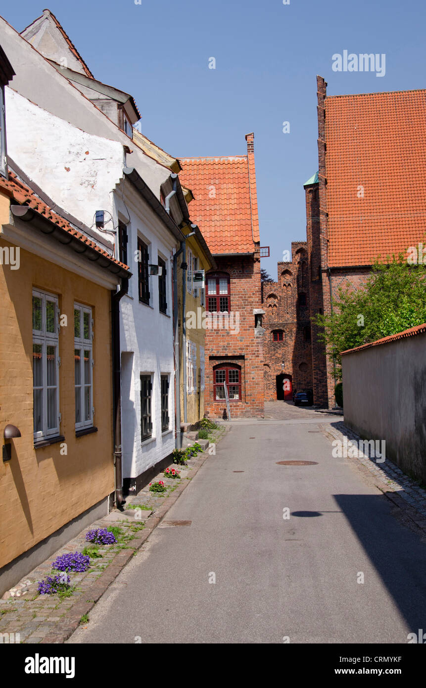 Denmark, Helsingoer. Typical historic downtown architecture. - Stock Image