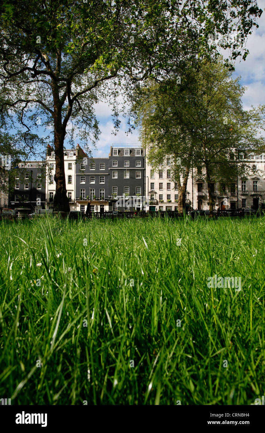 Worm's eye view of Berkeley Square, Mayfair, London, UK - Stock Image