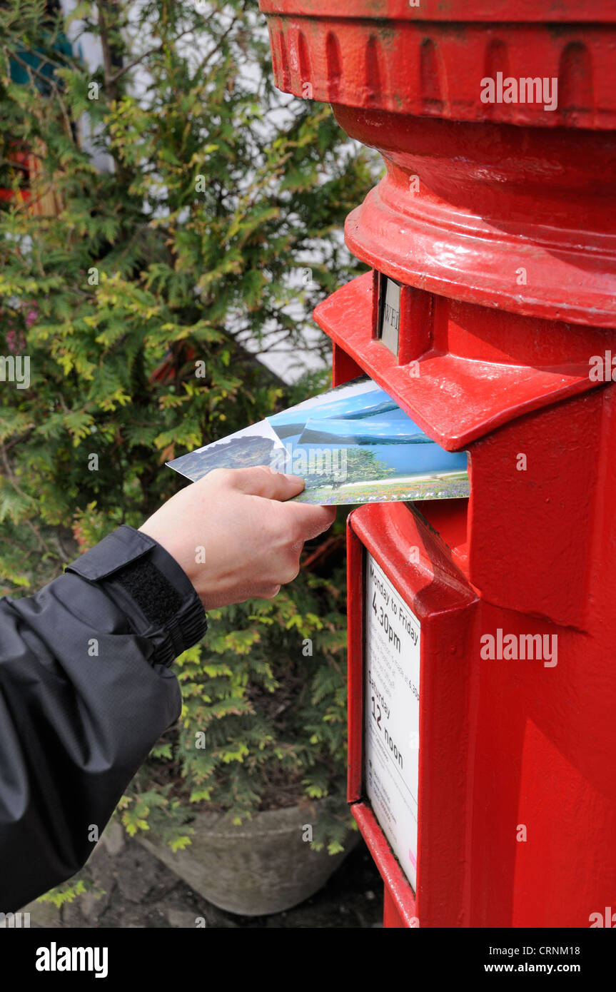 Posting postcards into a traditional red letter box. Stock Photo