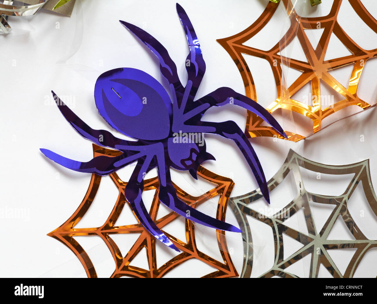 shiny spider and spider webs decorations for halloween set on white background - Stock Image