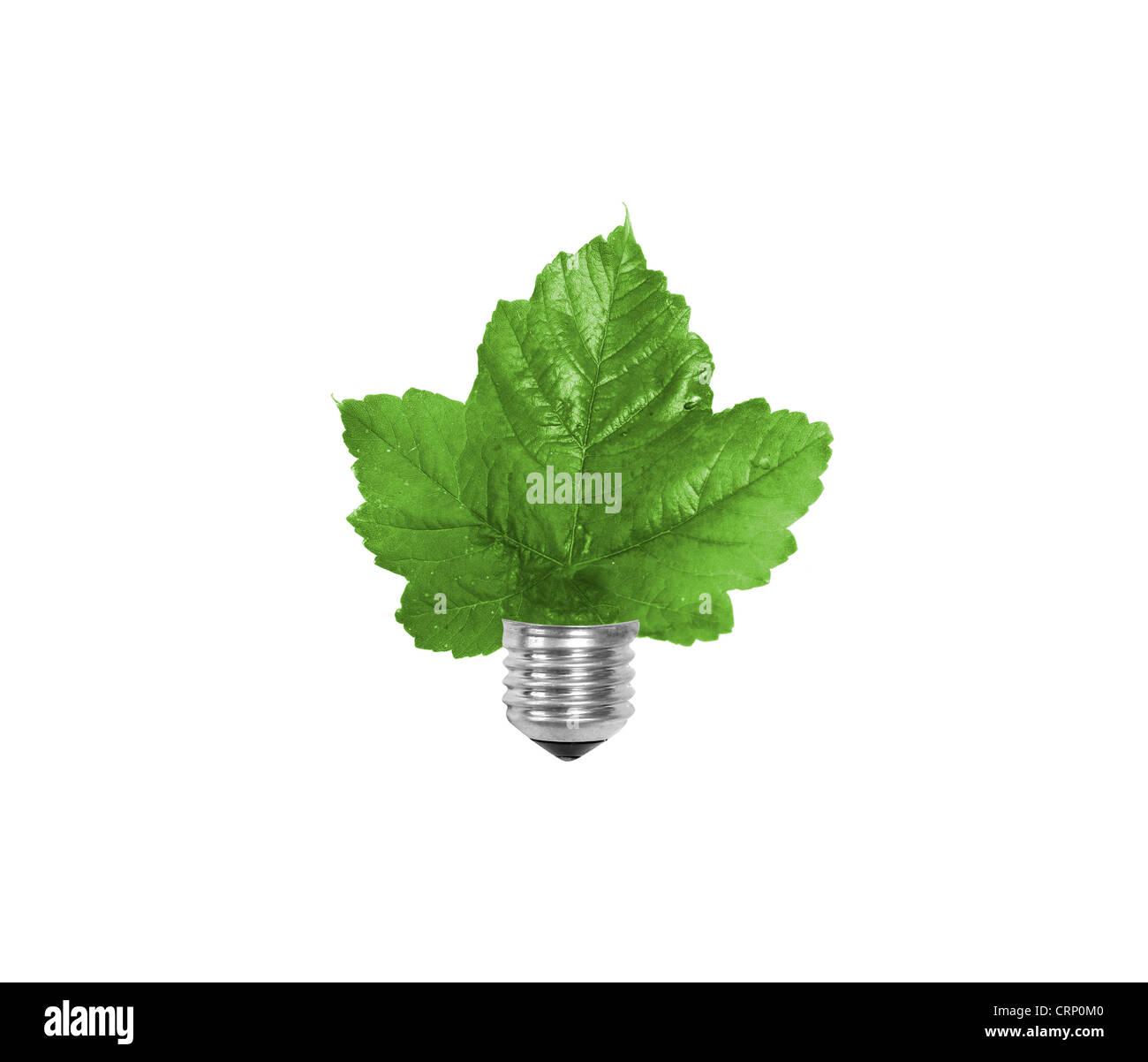 Sustainable energy isolated on white - Stock Image