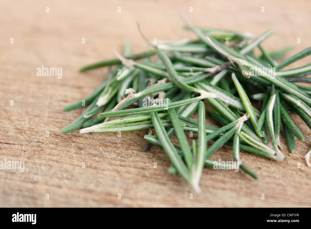 A bunch of rosemary leaves - Stock Image