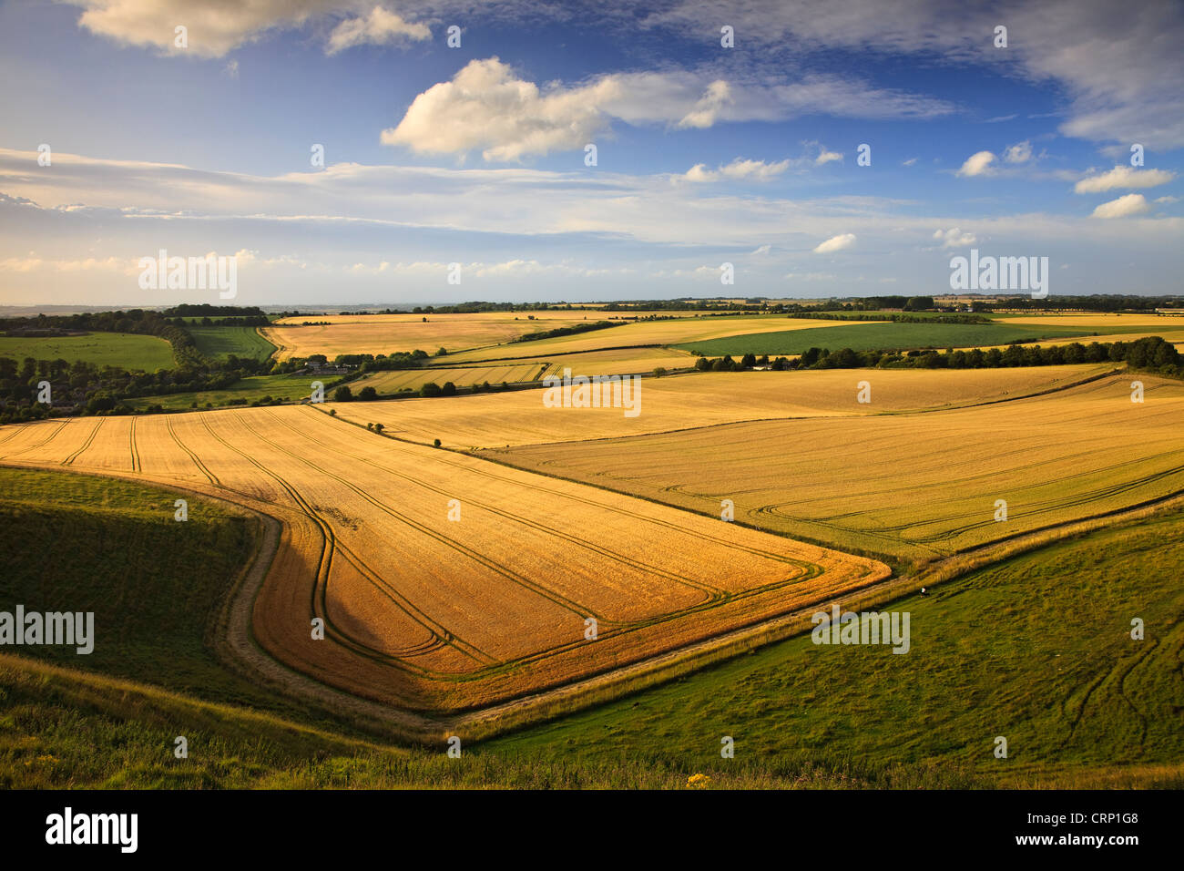 View across flat plains from Oldbury Castle Iron Age hillfort near Cherhill. - Stock Image