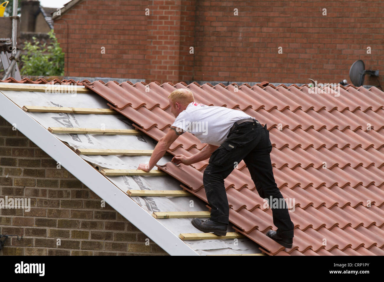 Men Laying New Roof Tiles Stock Photo 49042195 Alamy