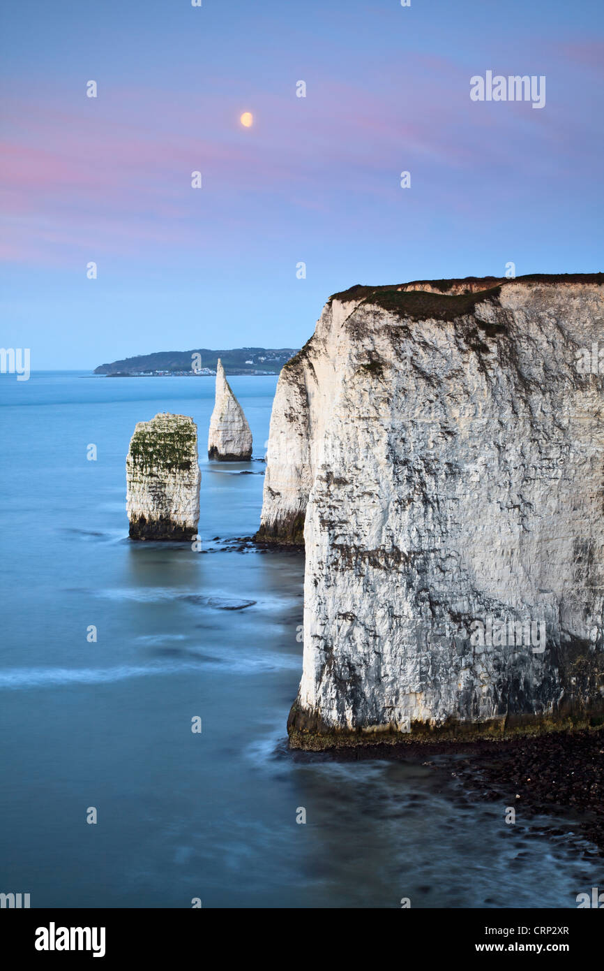 The moon setting over the Pinnacles, at Handfast Point near Swanage. - Stock Image