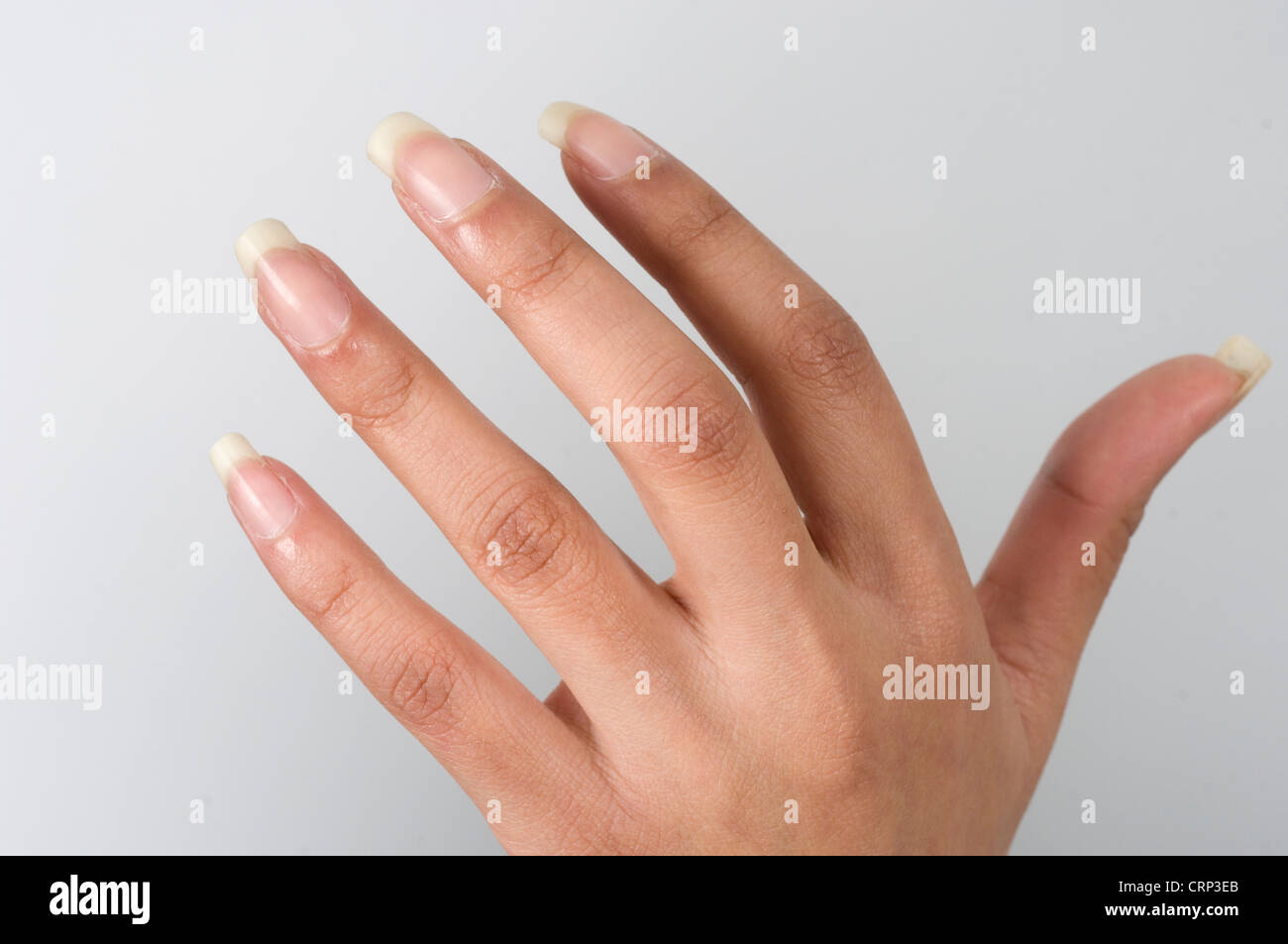 Woman's hand. - Stock Image