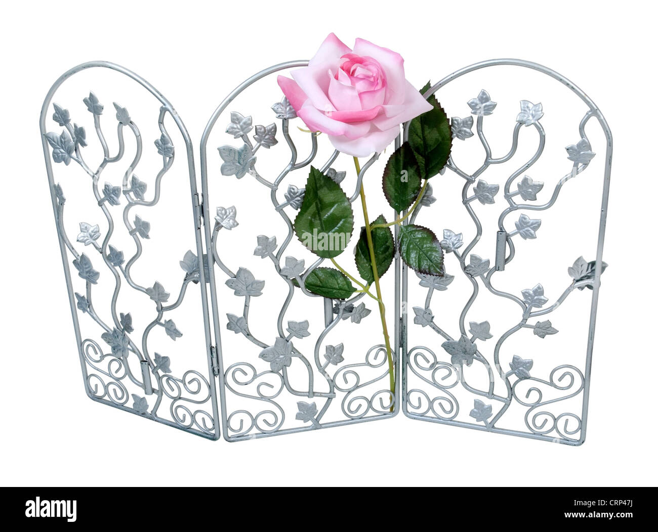 Pink rose on a silver trellis to support it as it grows - path included - Stock Image