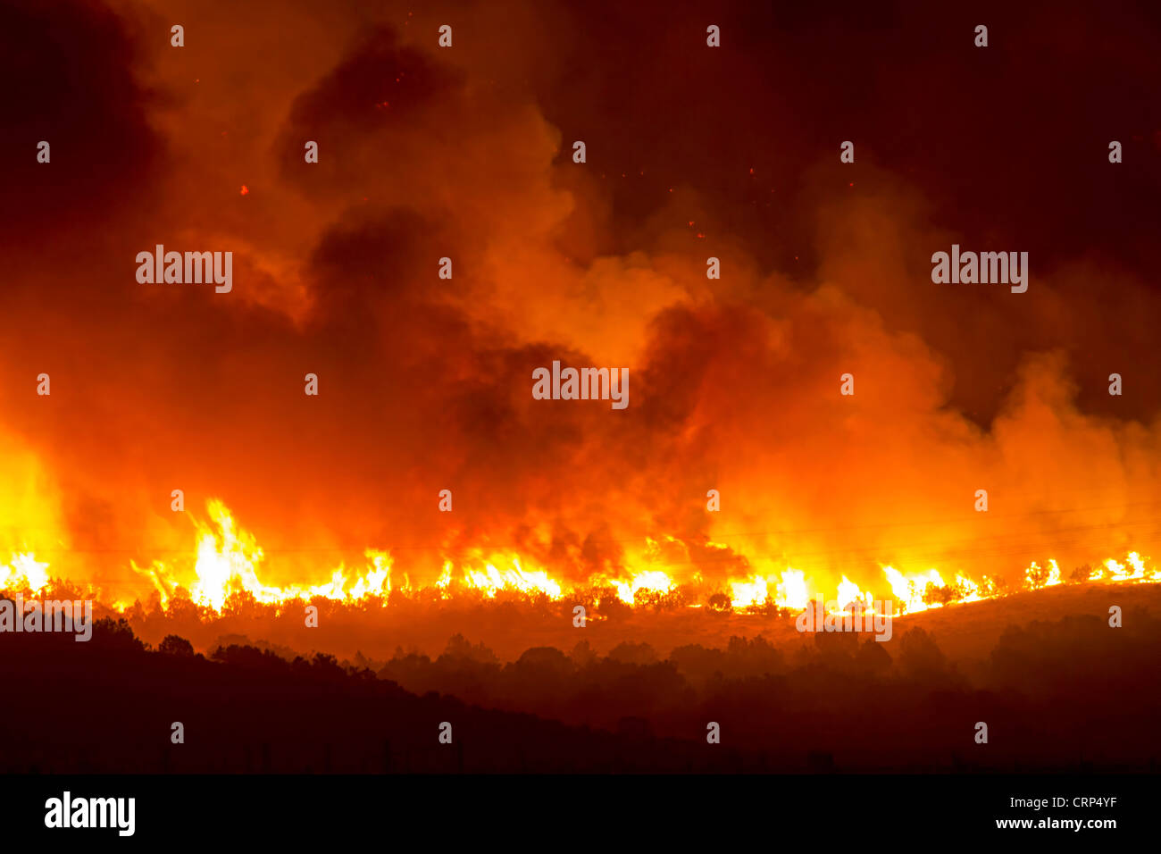 Forest fire burns out of control during night in Wood Hollow Canyon. Flames burning on mountain and wilderness. Stock Photo
