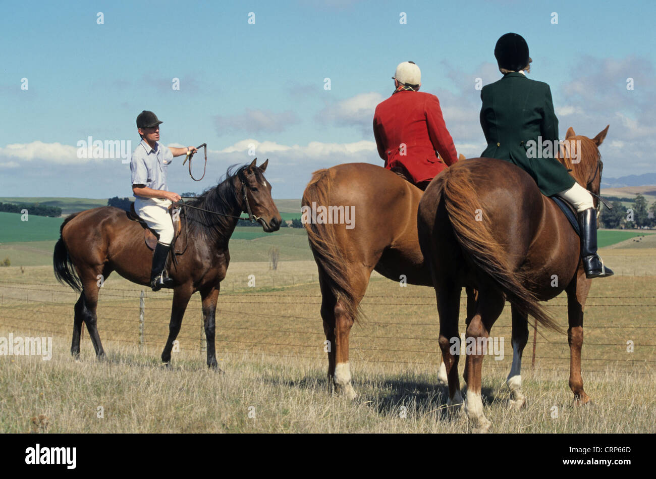 Master of Hunt and wife with local landowner, waiting on horseback during harrier hunt, hunting for hares or foxes Stock Photo