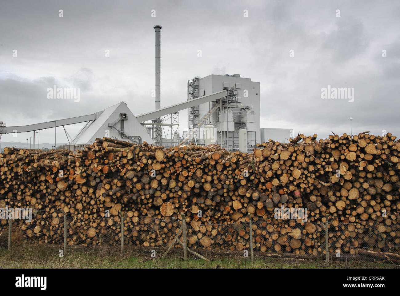 Biomass powerstation with stack of timber, largest biomass plant in Scotland, Steven's Croft Biomass Power Station, - Stock Image