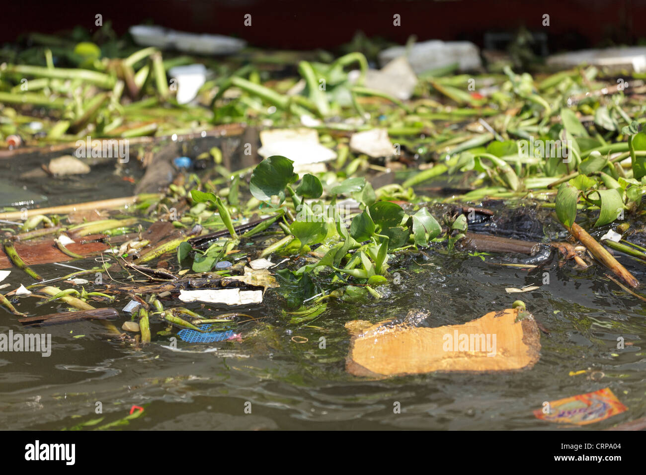 Floating trash pollution in water river, Bangkok, Thailand - Stock Image