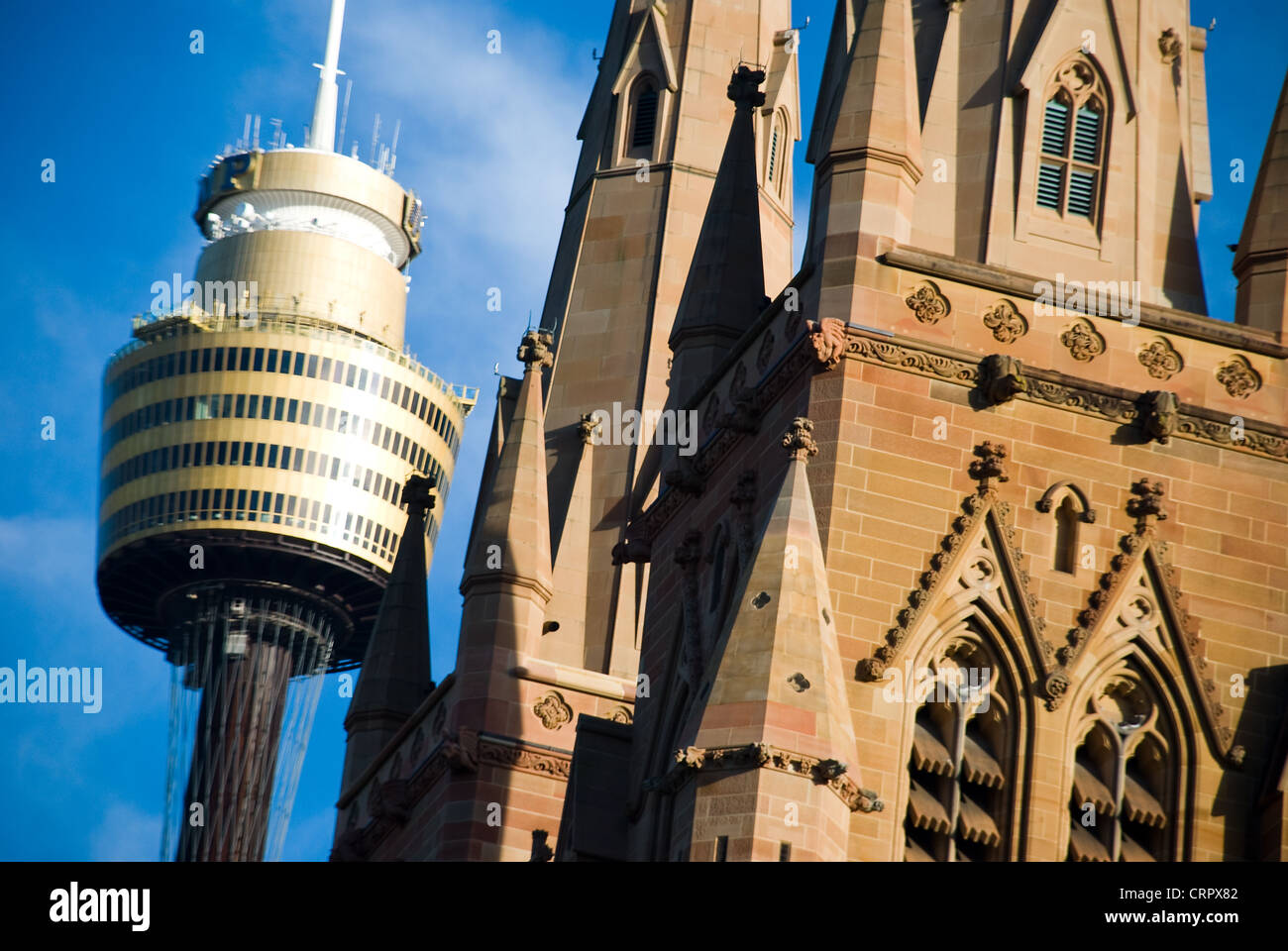 St Mary's Cathedral Sydney Tower  Sydney Australia - Stock Image