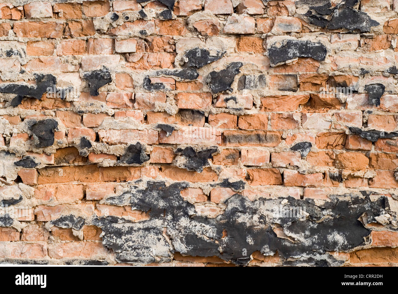 close up view of old broken wall - Stock Image