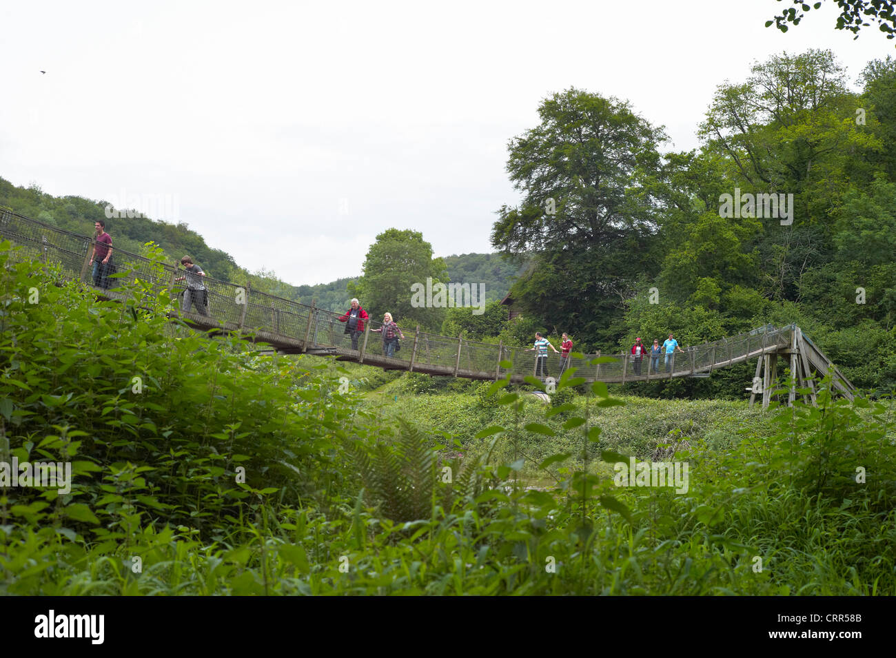 Suspension footpath bridge over the river wye at The Biblins near symonds yat herefordshire england - Stock Image
