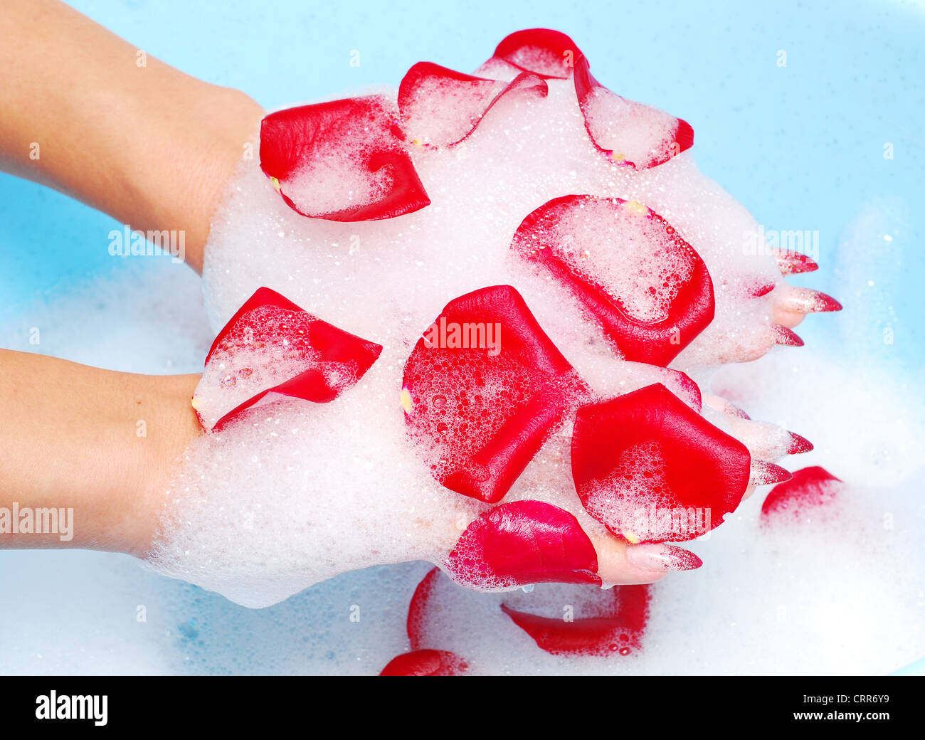 woman hands in relaxing spume with rose petals - Stock Image