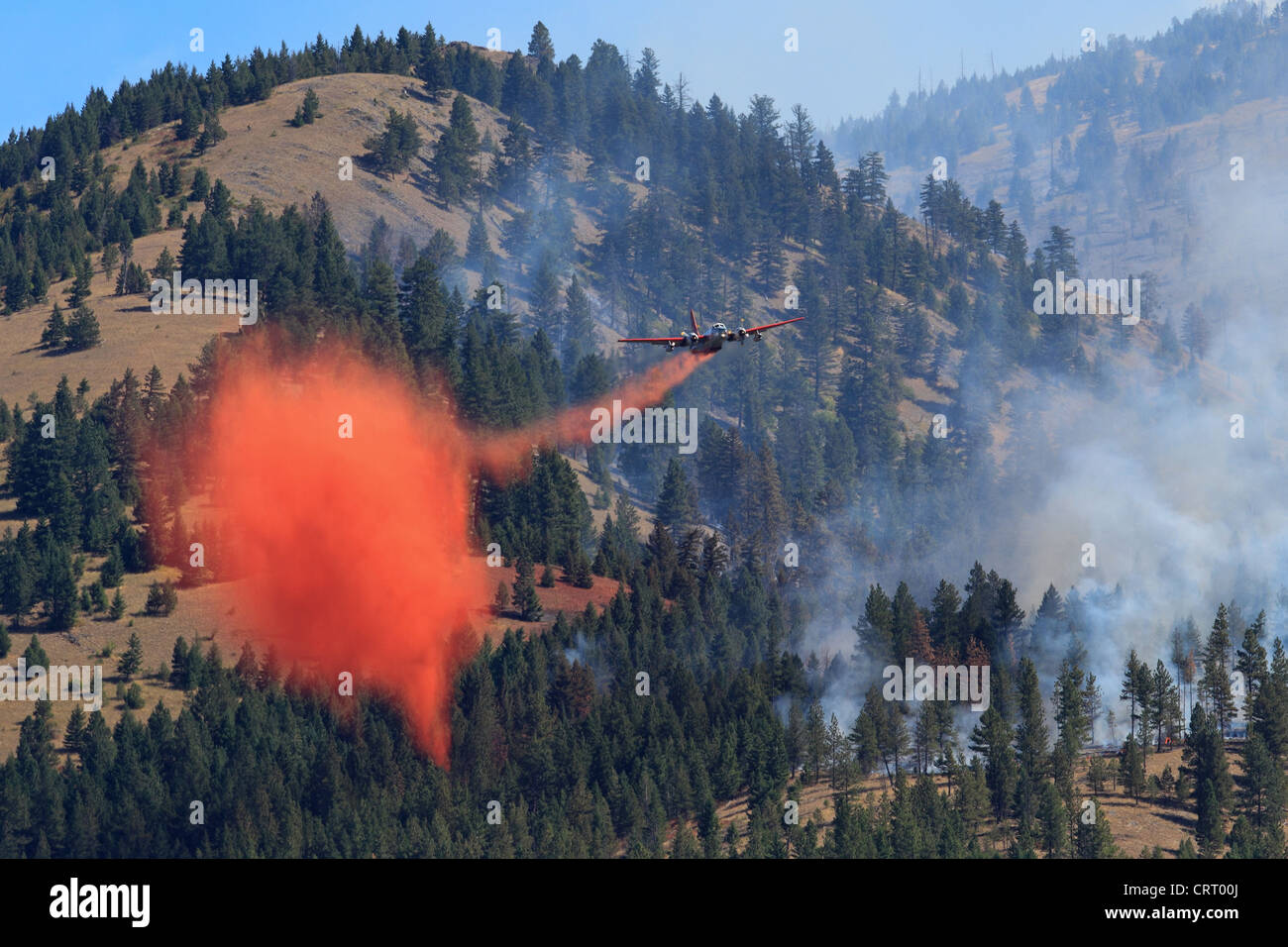 A U.S. Forest Service Airplane drops chemical suppressant on a forest fire near Bonner, Montana, USA. - Stock Image