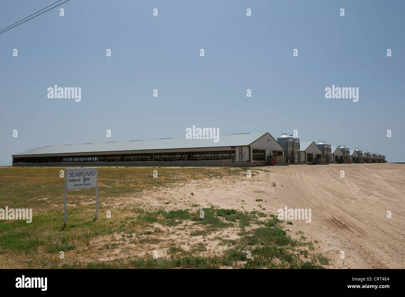 Seaboard Farms swine growing barns near Guymon, Oklahoma. These farms are placed close to major crop growing operations - Stock Image
