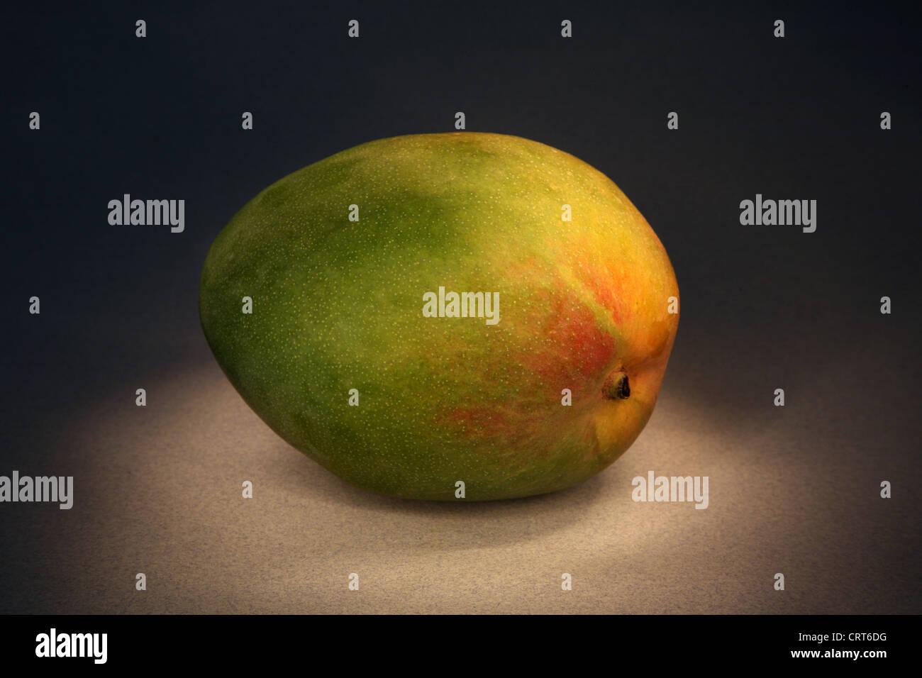 Mango. - Stock Image
