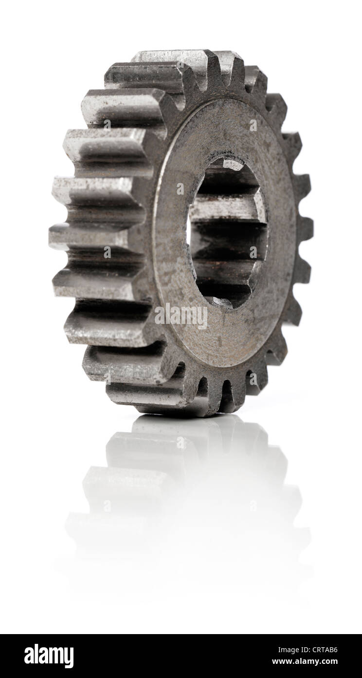 Old metallic cog gear wheel on white, with natural reflection. Short depth-of-field. - Stock Image