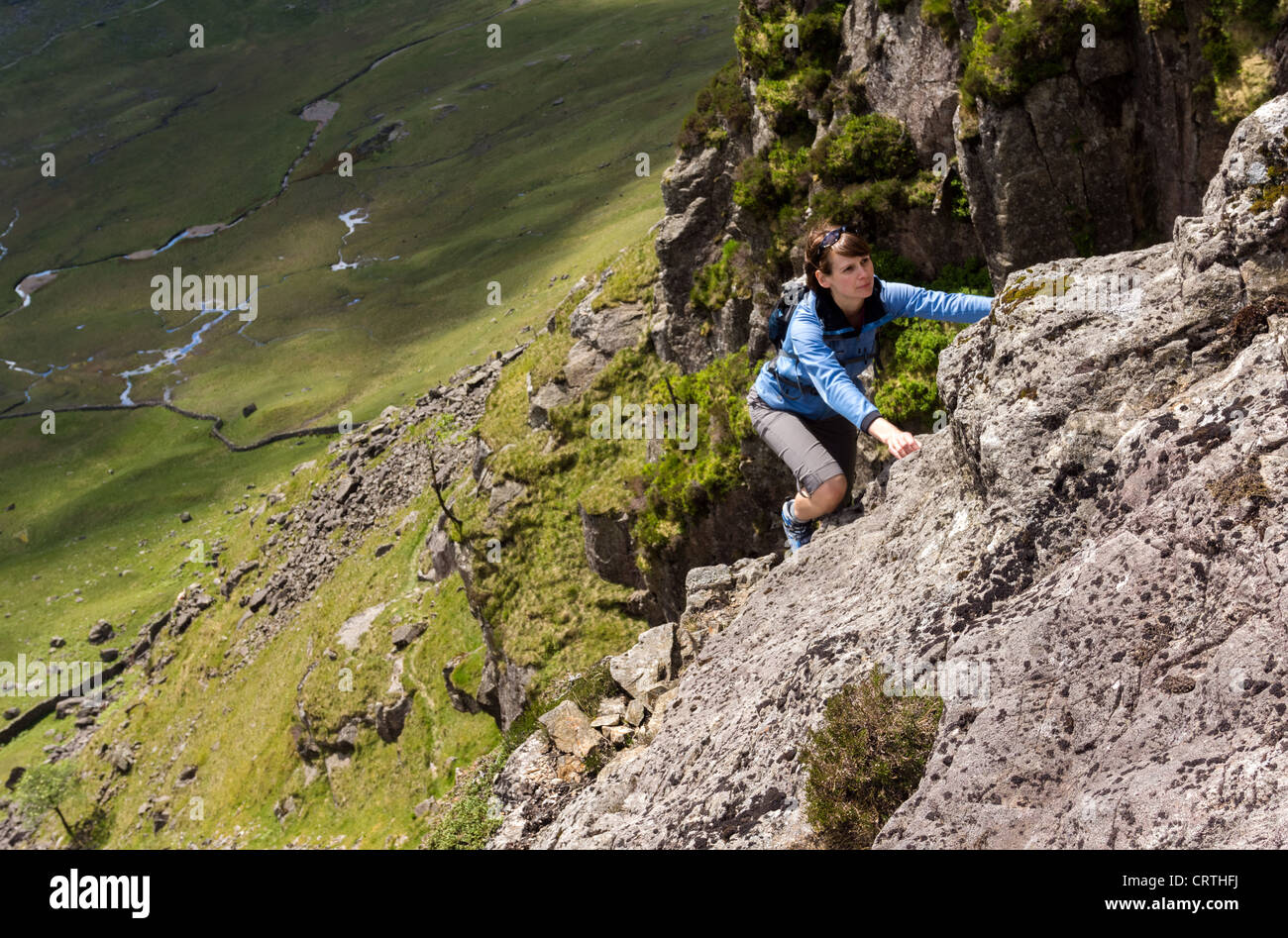 A rock scrambler on Gillercombe Crag (Rabbits Trod scramble) on Grey Knotts in the Lake District, UK. - Stock Image