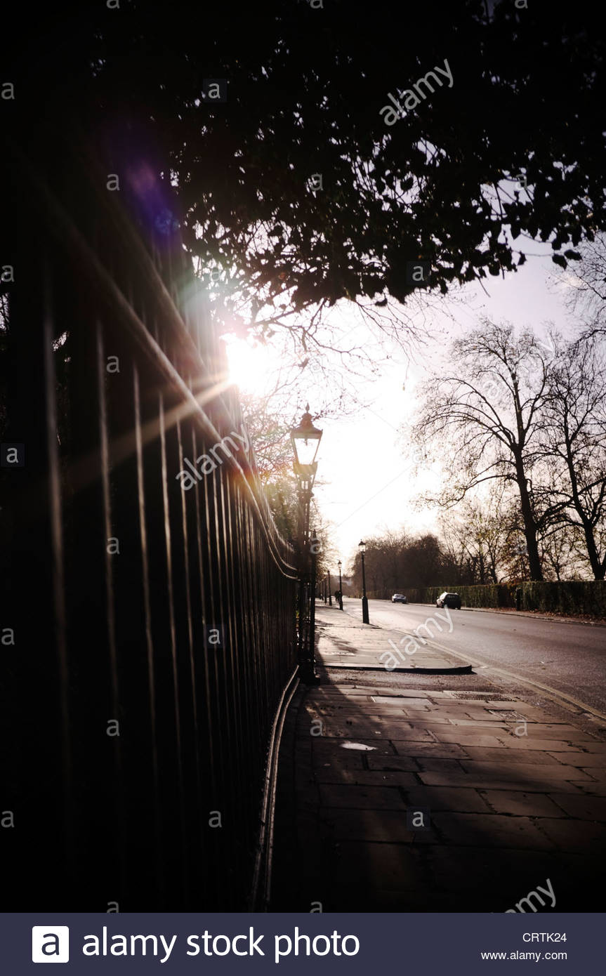 Quiet urban street showing railings, lamp, trees, road and pavement, London, UK. - Stock Image