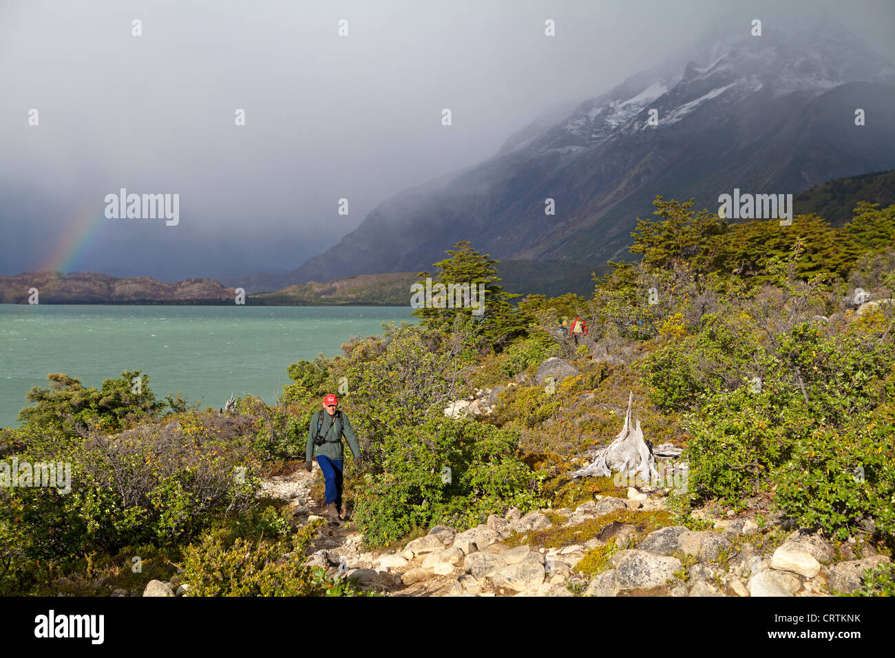 Hiker on the shores of Lago Nordenskjold in Torres del Paine National Park - Stock Image