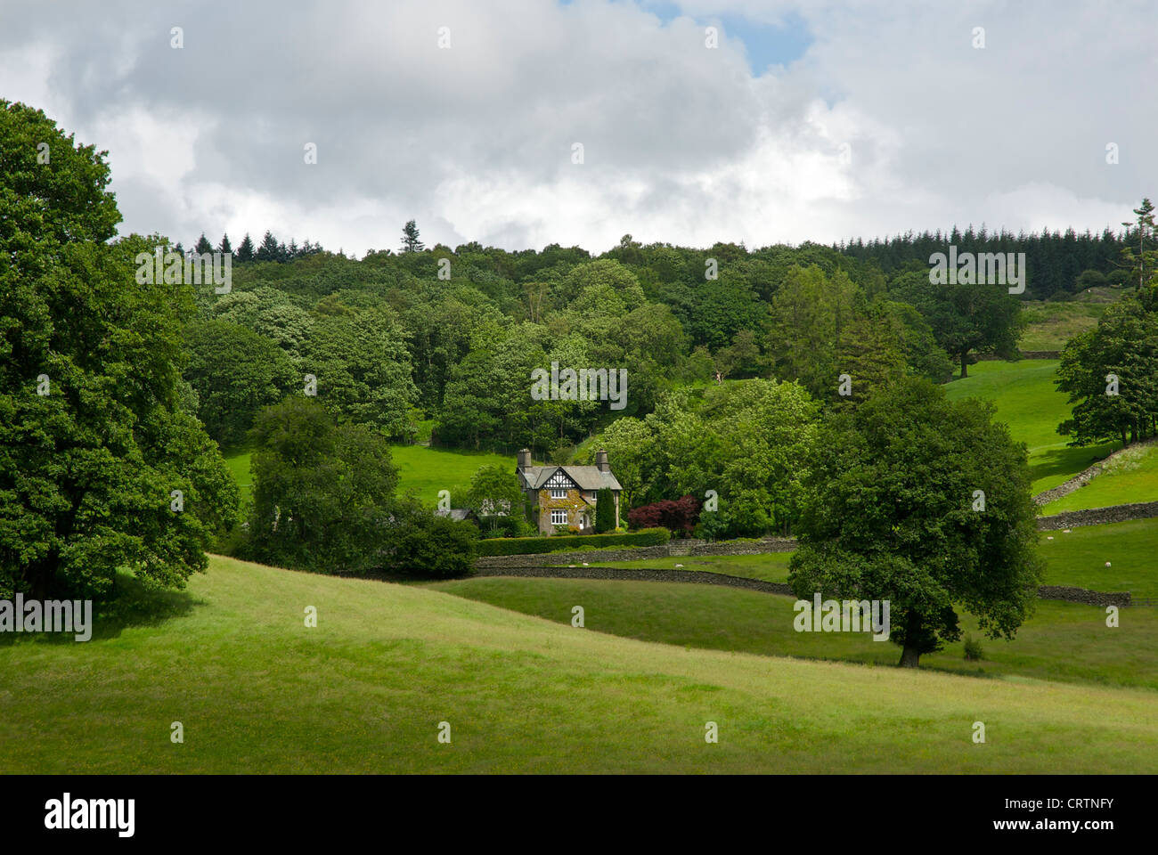 House and pasture near the village of Far Sawrey, Lake District National Park, Cumbria, England UK - Stock Image