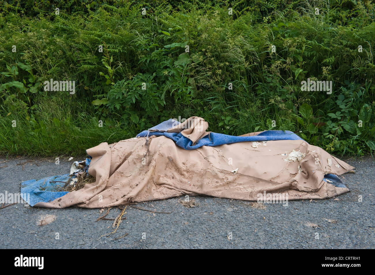 Fly tipping old household carpet dumped in roadside layby in countryside in rural Herefordshire England UK Stock Photo