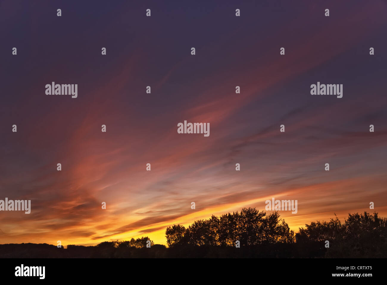 Evening mood at the Schlei near Fahrdorf - Stock Image