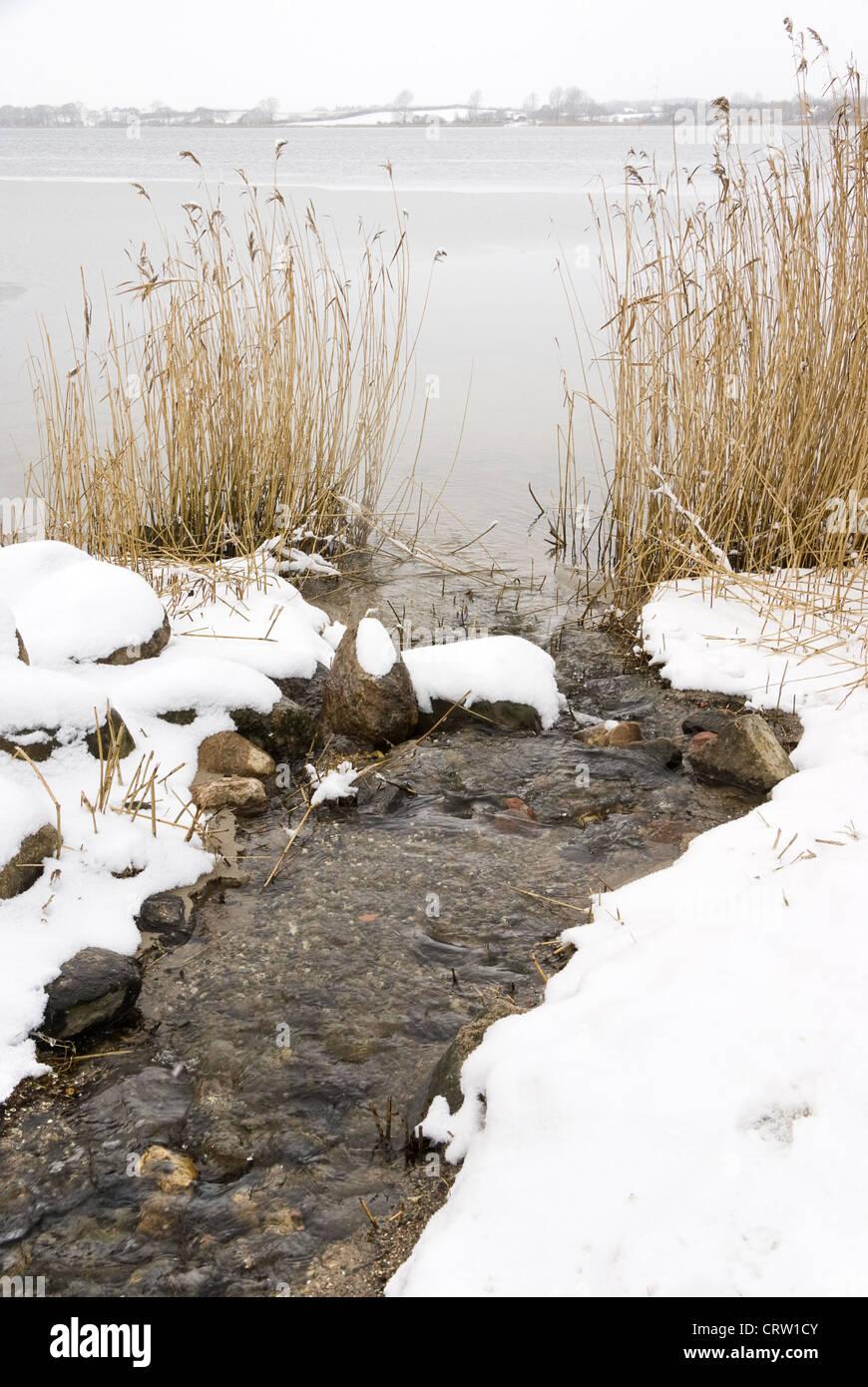 Winter landscape at the Schlei near Sieseby Stock Photo