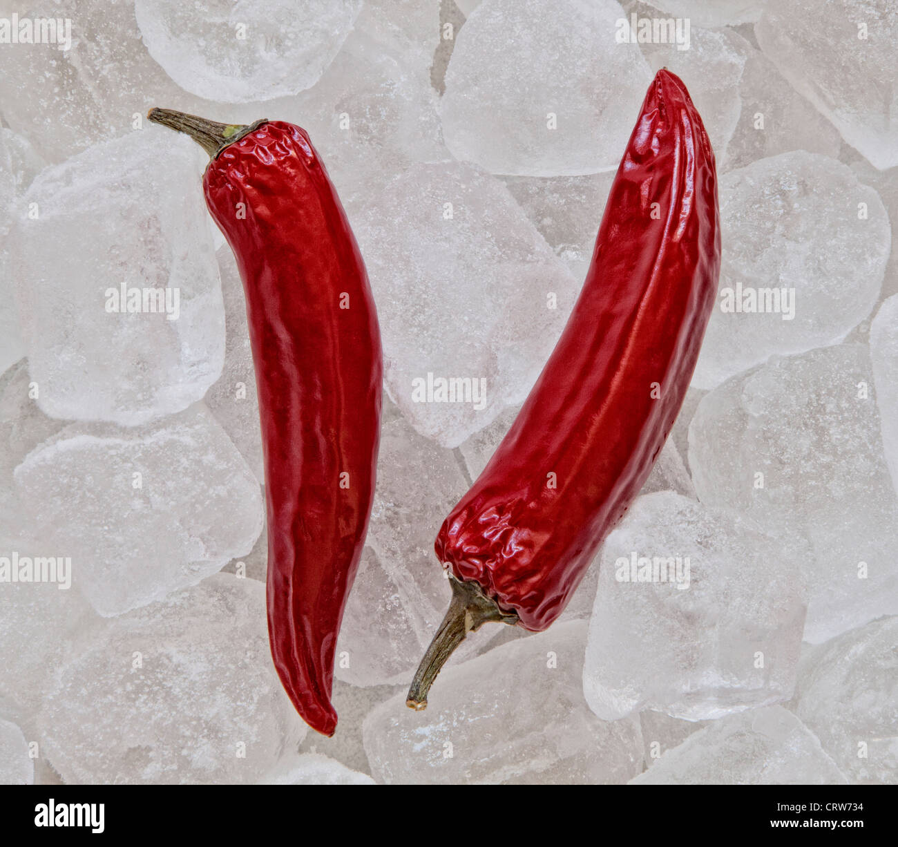 Chillies on Ice - Stock Image