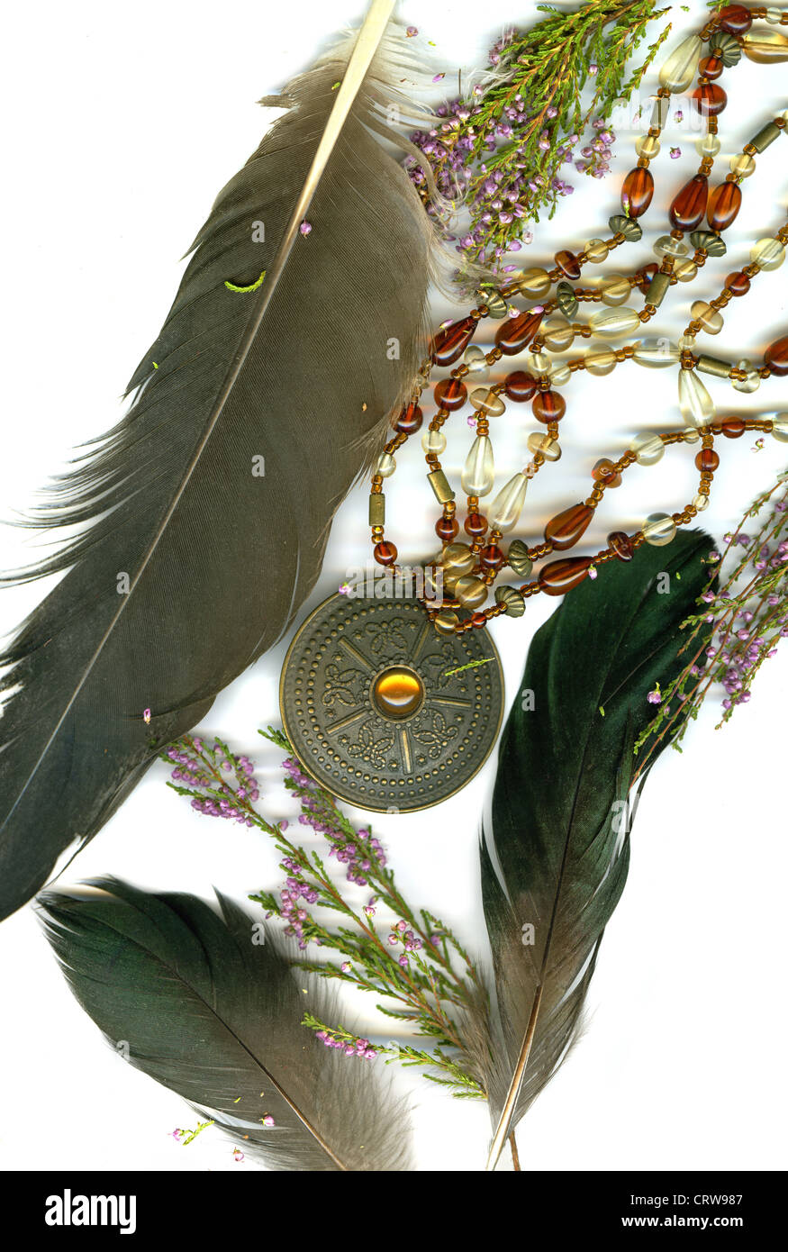Heather, plumes and old medallion - Stock Image