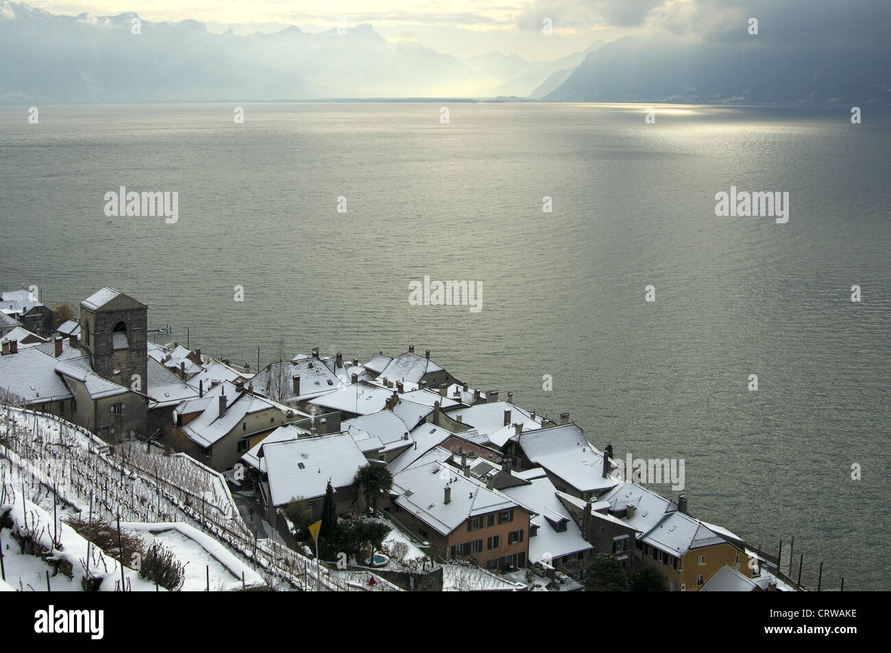 Saint-Saphorin on Lac Leman, Switzerland - Stock Image