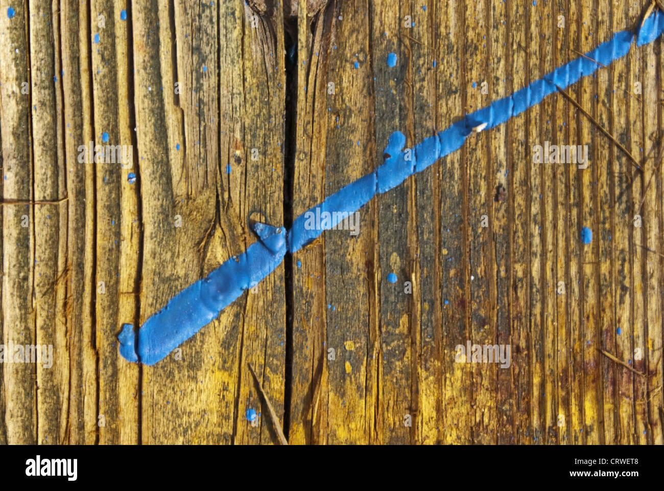 Blue splash of color on boards Stock Photo