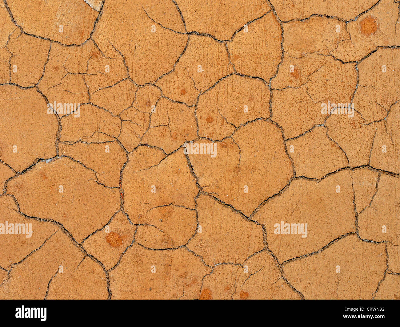 Cracked clay surface - Stock Image