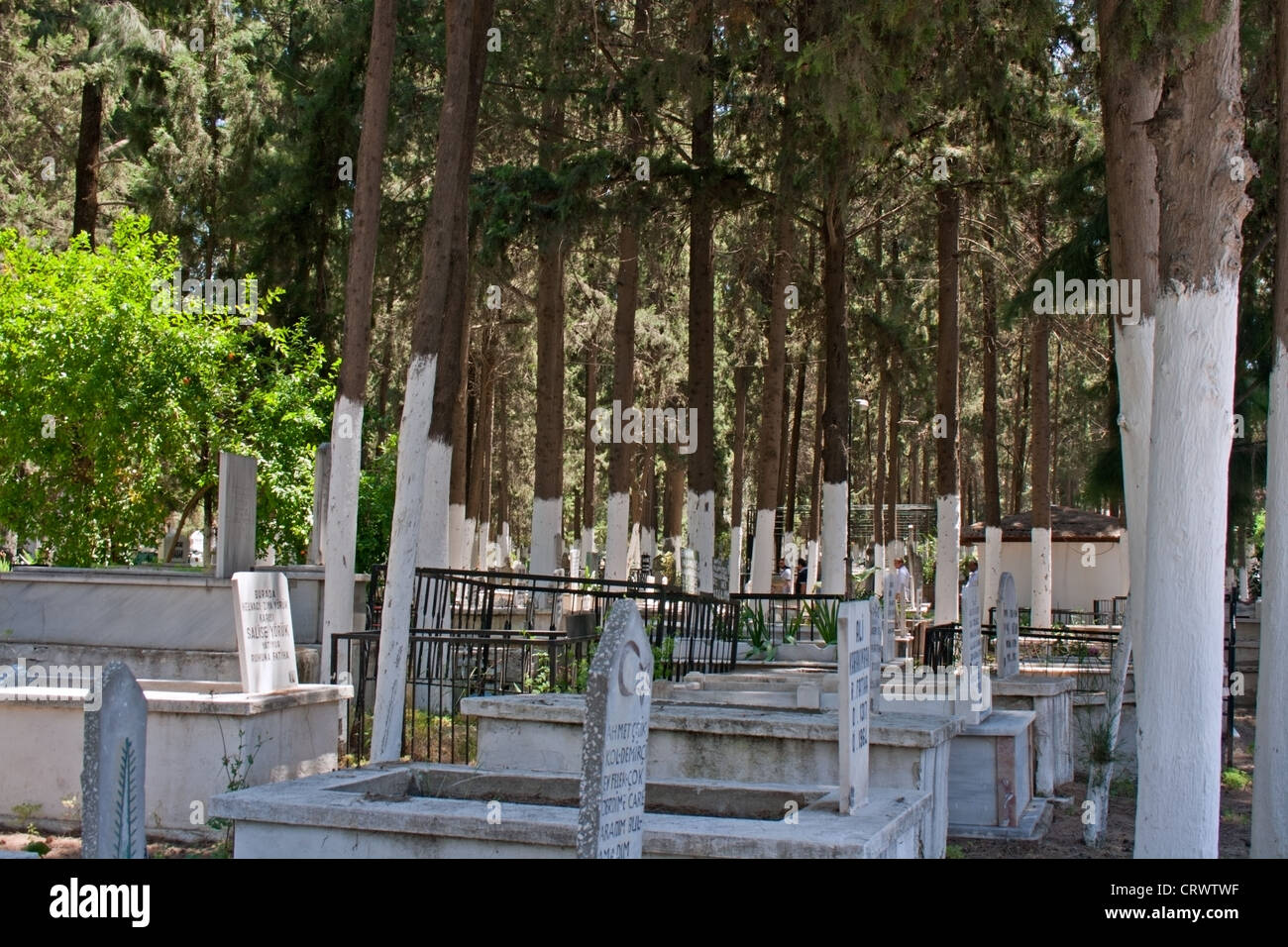 Headstones in Islamic cemetery Stock Photo