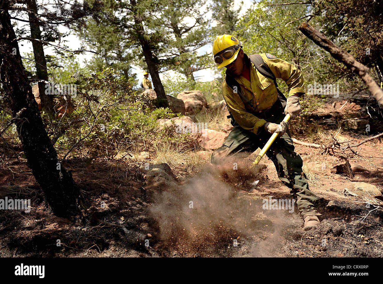 Wildfire Hot Shot fire fighter Lupe Covarrubias cuts a fire line to battle the Waldo Canyon fire on June 28, 2012 - Stock Image