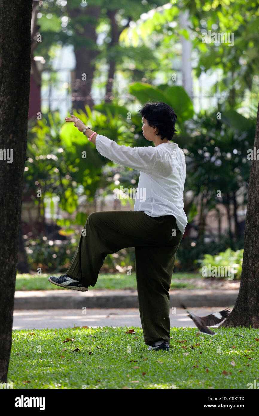 A young Thai woman practicing tai-chi-chuan in the early morning (Bangkok) Jeune femme Thaïlandaise pratiquant - Stock Image