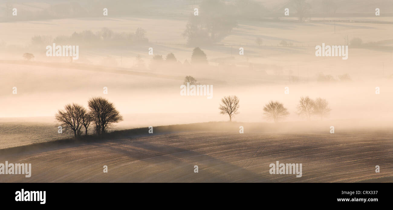 Mist covered rolling countryside, Near Thorverton, Devon, England. Winter (March) 2010. - Stock Image
