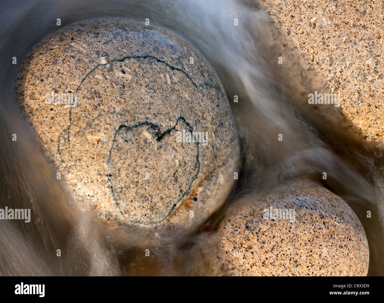 Heart shaped pattern on a circular granite boulder, Porth Nanven, Cornwall, England. Spring (April) 2012. - Stock Image