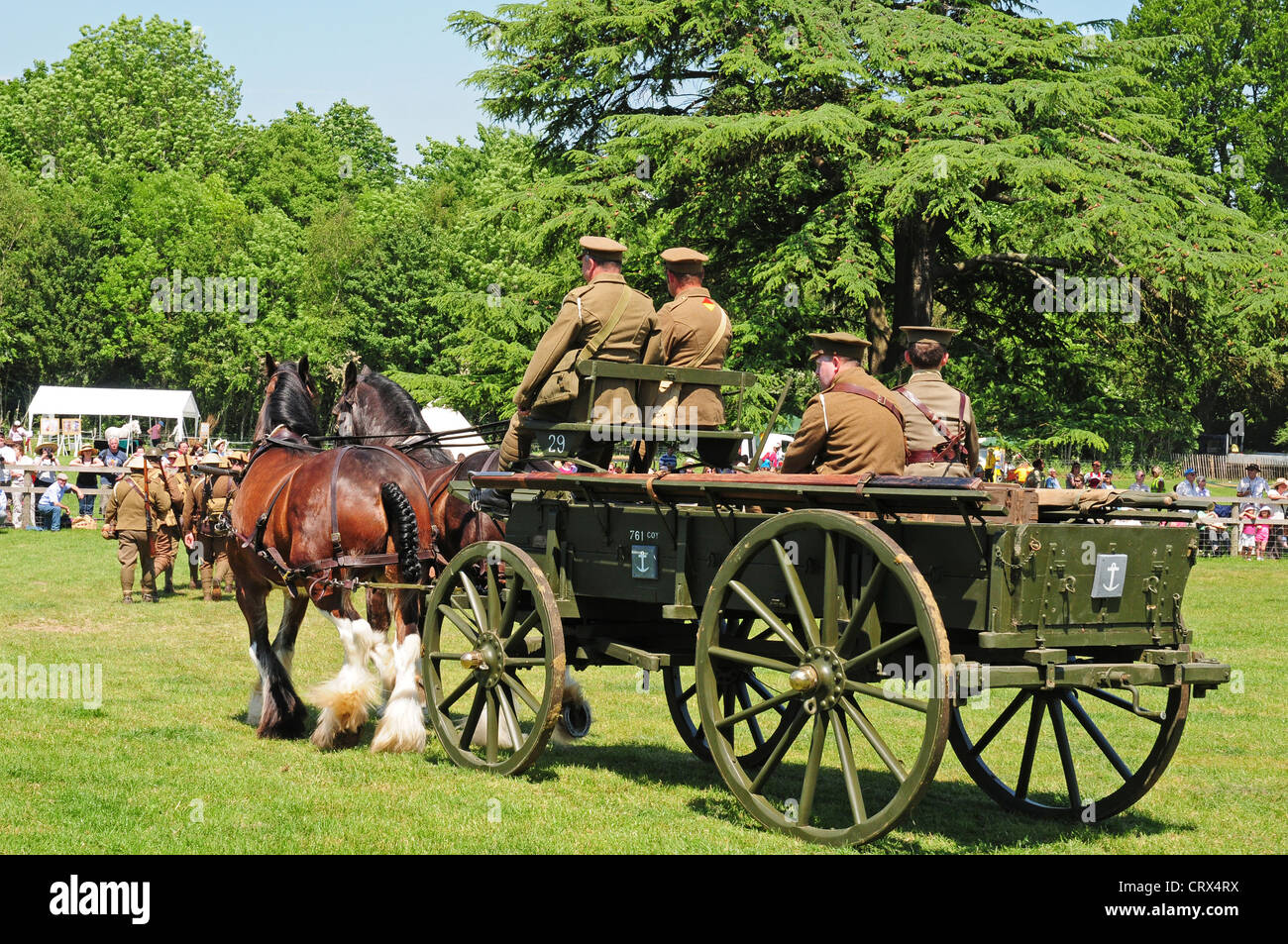 Two Shire horses pulling World War One General Service  vehicle. - Stock Image