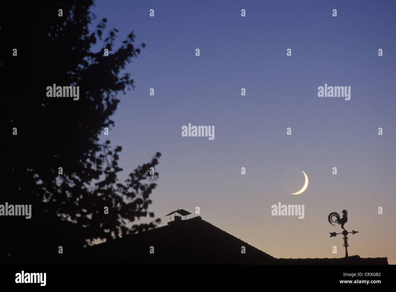 Crescent moon over a house roof with weather vane in the blue hour - Stock Image