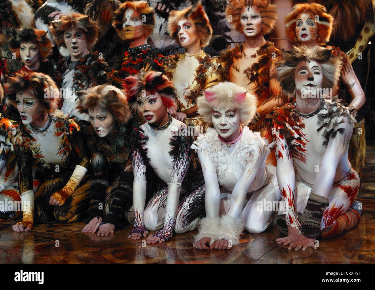 Musical CATS at the CAPITOL theater in Duesseldorf - Stock Image
