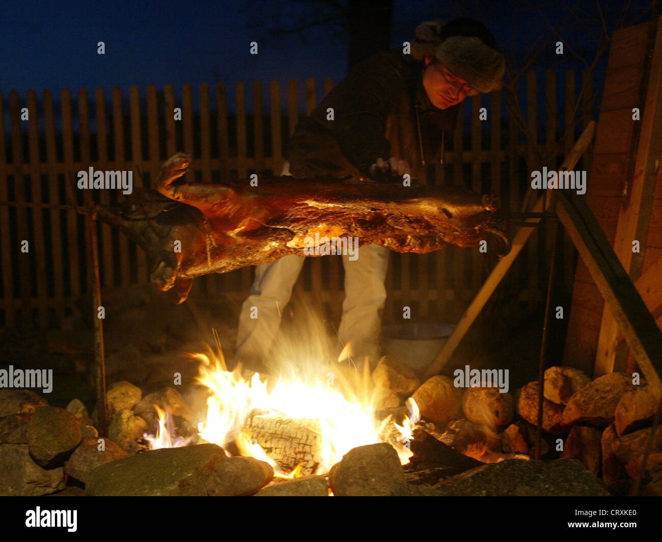A man grilling a freshly killed suckling pig - Stock Image